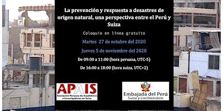 La prevención y respuesta a desastres de origen natural, Perú y Suiza entradas