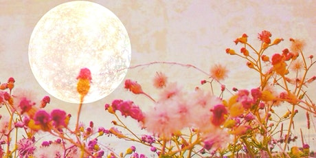 Moon Magic. Learn  How to Co-create with the Moon tickets