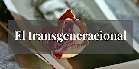 Transgeneracional: descubre tu poder personal con tu árbol genealógico entradas