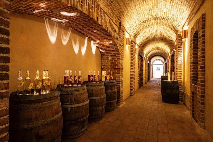 Immagine Sedute Spiritiche in Distilleria