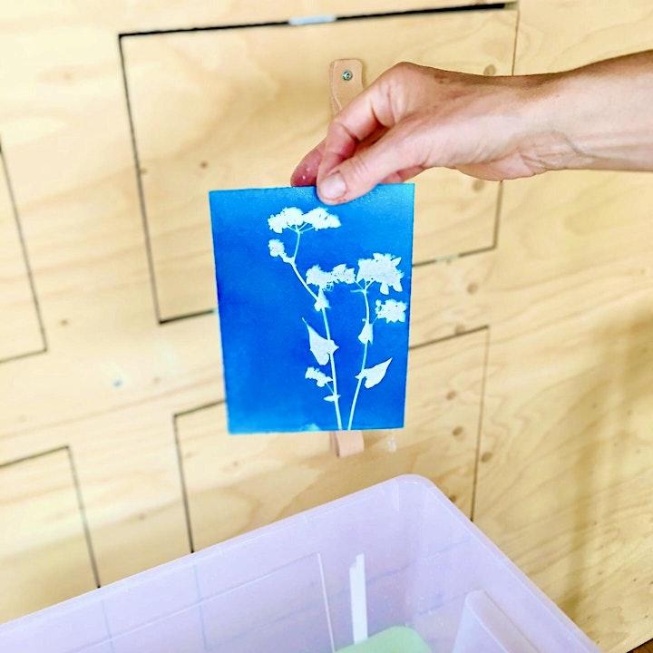 Sunprint Workshop: Bild