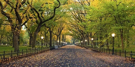 LGBT Socially Distanced Speed Socializing Walk in Central Park: Age 40 + tickets
