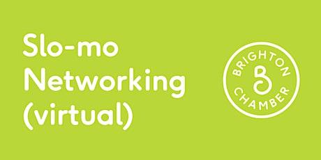 Slo-mo Networking November (virtual) tickets