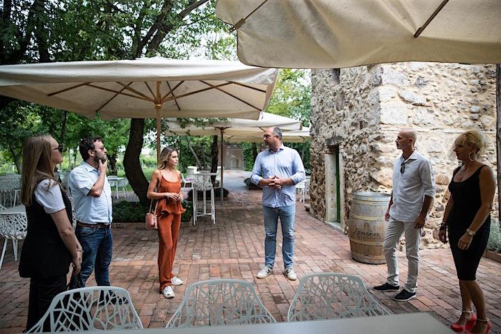 Immagine Degustazione Vini Rossi e Valpolicella a Lazise