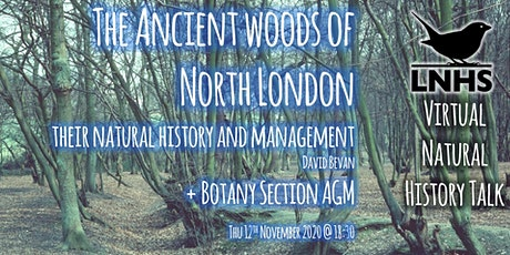 The Ancient Woods of North London by David Bevan and Botany AGM