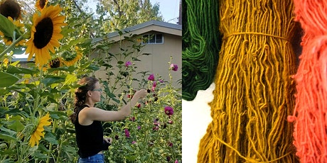 Harwood Art School: Natural Dyes, From your Kitchen to New Mexican Plants tickets