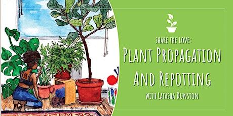 Plant Propagation & Repotting with Latasha Dunston
