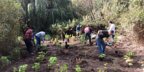 Trout Lake Planting Event tickets