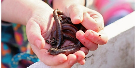 Kids Go Wild! Worm Friends – Presented by PLOT tickets