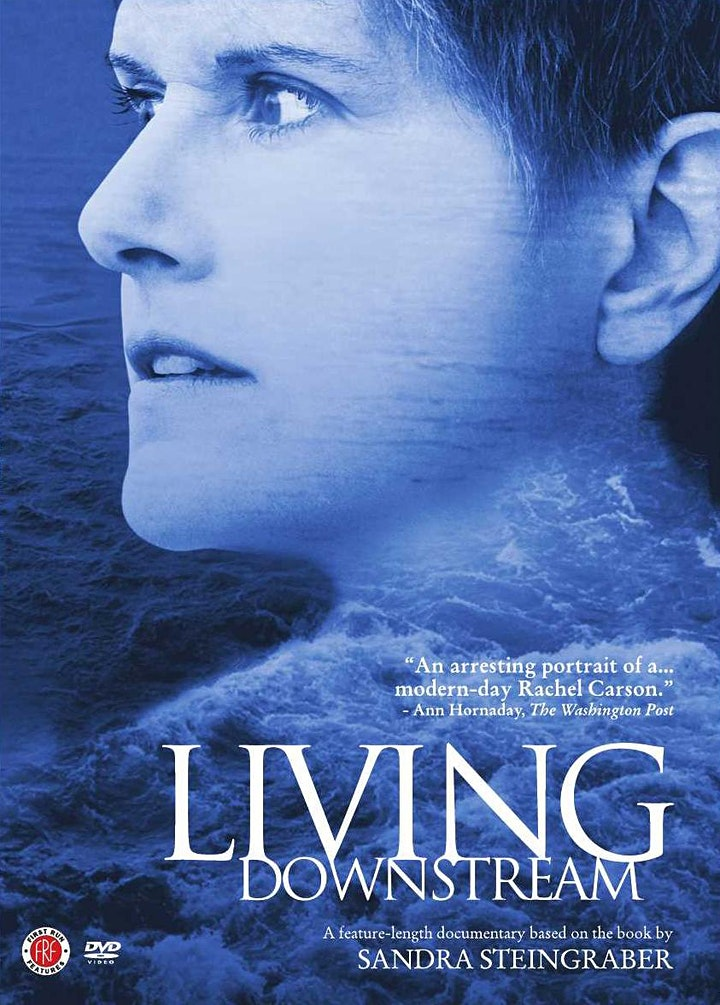 Living Downstream - Virtual Screening and Q&A image