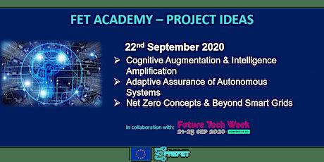 FET Academy: Intelligence Amplification | Autonomous Systems | Smart Grids tickets