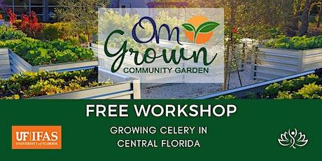 OM Grown Garden: Growing Celery in Central Florida tickets
