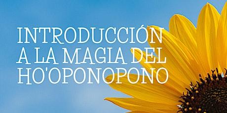 Introducción a la MAGIA DEL HO'OPONOPONO entradas