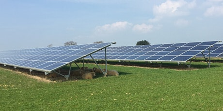 Green Shoots for Solar Farms? tickets
