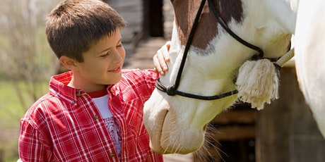 Social and Emotional Equine Assisted Learning Group Boys 8-11 years tickets