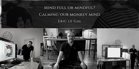 Mind full or mindful ? Calming our Monkey Mind -Mindfulness online seminar tickets
