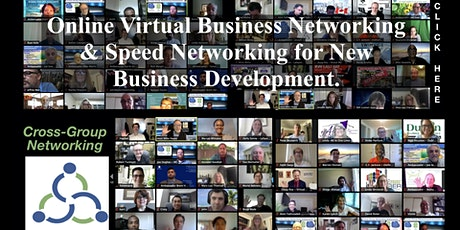 Online Virtual Business Networking & Speed Networking for New Business Dev. biglietti