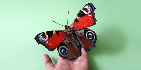 Paper Butterfly workshop - online tickets