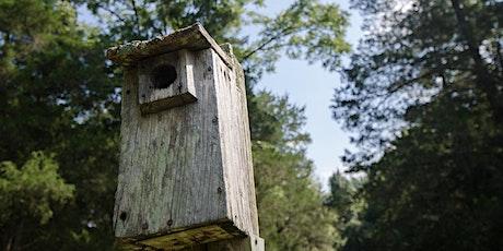BSSA Build-a-Birdbox Workshop tickets