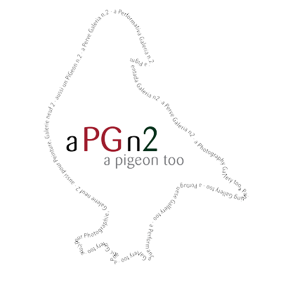 aPGn2 - a PiGeon too logo