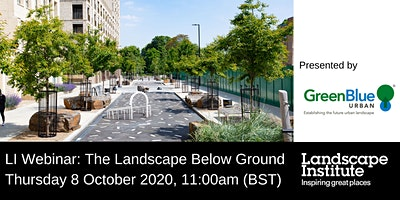 LI webinar: The Landscape Below Ground