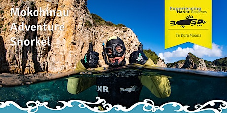 Mokohinau Adventure Snorkel tickets