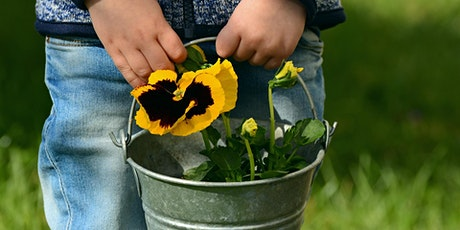 Grow! Gardening Fun at Merewether Community Garden -October School Holidays tickets
