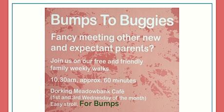 Bumps Meadowbank Walk tickets