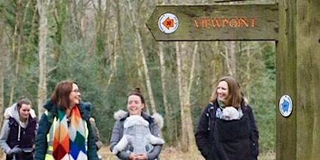 Buggies Holmwood Common Walk tickets