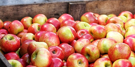 Apple Pressing in Cranbrook Community Orchard tickets