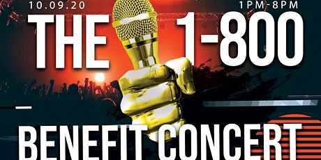 Wings For Hope 1-800-BenfitConcert tickets