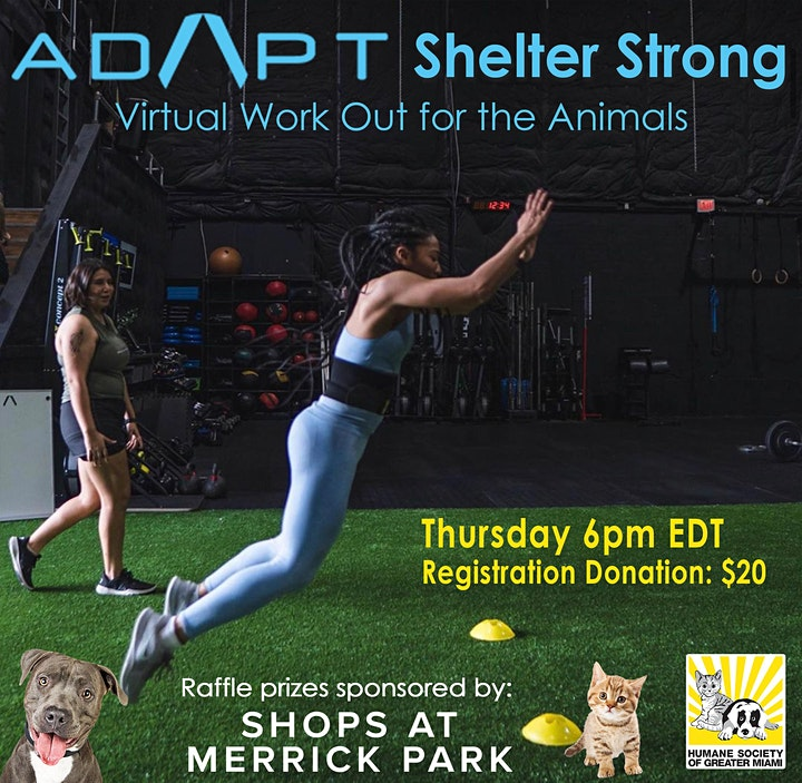 ADAPT Shelter Strong - Virtual Workout for the Animals image