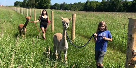 Alpaca Walk tickets