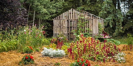 Visit Birchwood Meadows Flower Farm tickets