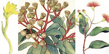 Native Flora Watercolour Workshop tickets