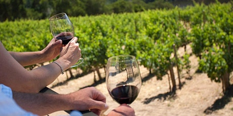 Classic Wine Country Bike Tour - in Long Island, NY - $98 + add-s tickets