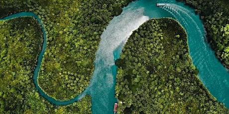 Forest-Water Nexus Supporting Biodiversity tickets