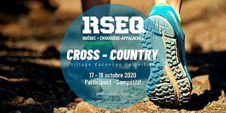 Cross-country RSEQ-QCA billets