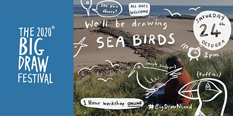 The Big Green Draw: Northumberland Seabirds Online workshop tickets
