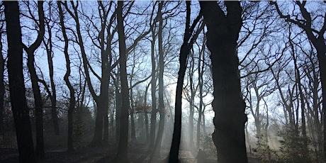 Wonderful Woodlands tickets