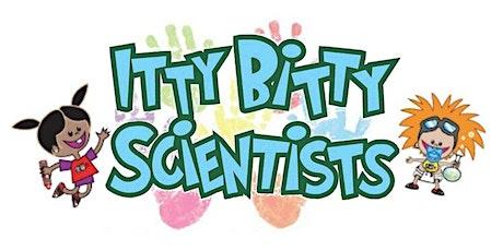 Itty Bitty Scientists  - Itsy Bitsy Spider Saturday, Nov. 7th tickets