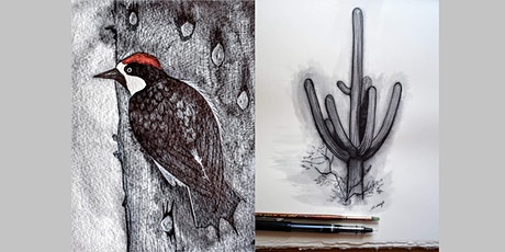 Sketching Desert Landscapes: Expressing value with water-soluble ink tickets