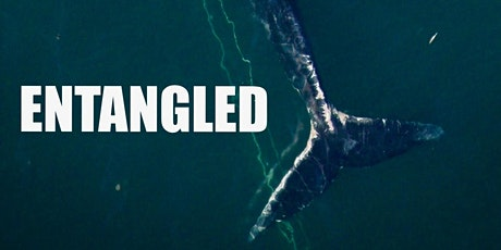 Entangled Screening and live Q&A with Director David Abel tickets