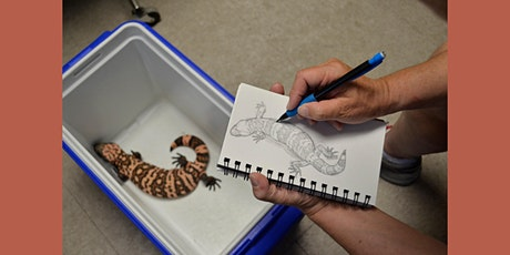 Slithery Subjects—Drawing Desert Reptiles tickets