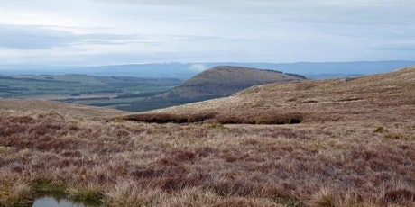 Matterdale Common conservation day tickets