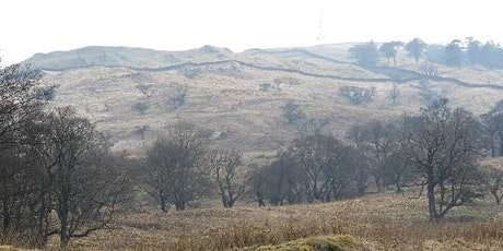 Grayrigg Pike – Low Borrowdale near Tebay - conservation day tickets