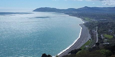 MEET UP SERIES: Killiney Hill Hike & Vico Beach tickets