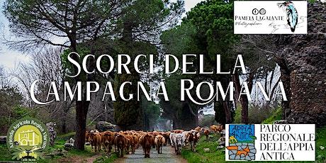 """Inaugurazione mostra fotografica """"Scorci della campagna romana"""" biglietti"""