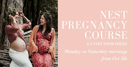 Nest Pregnancy Course tickets