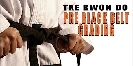 Tae Kwon Do Pre Black Belt tickets
